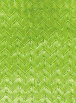 Color Option Image