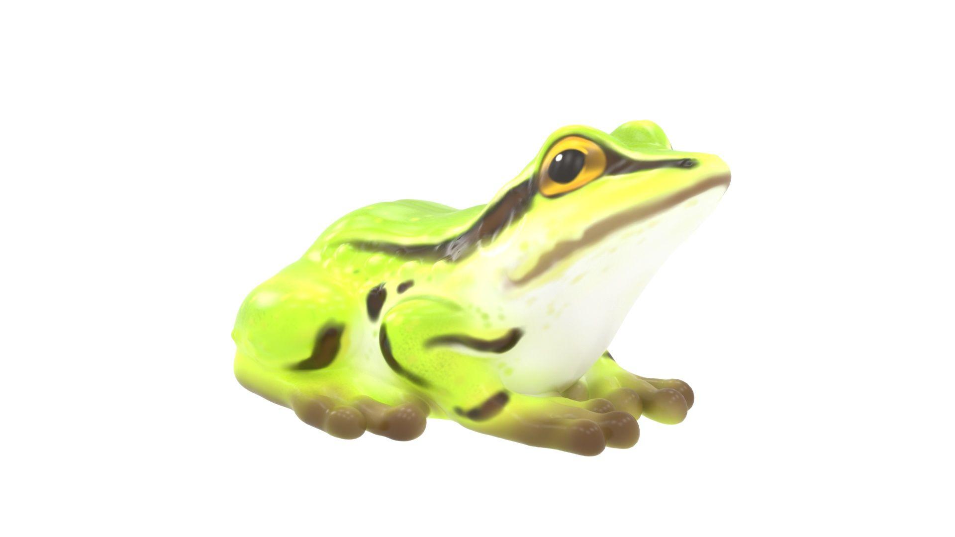 Frog Climber (MRTP2021M)