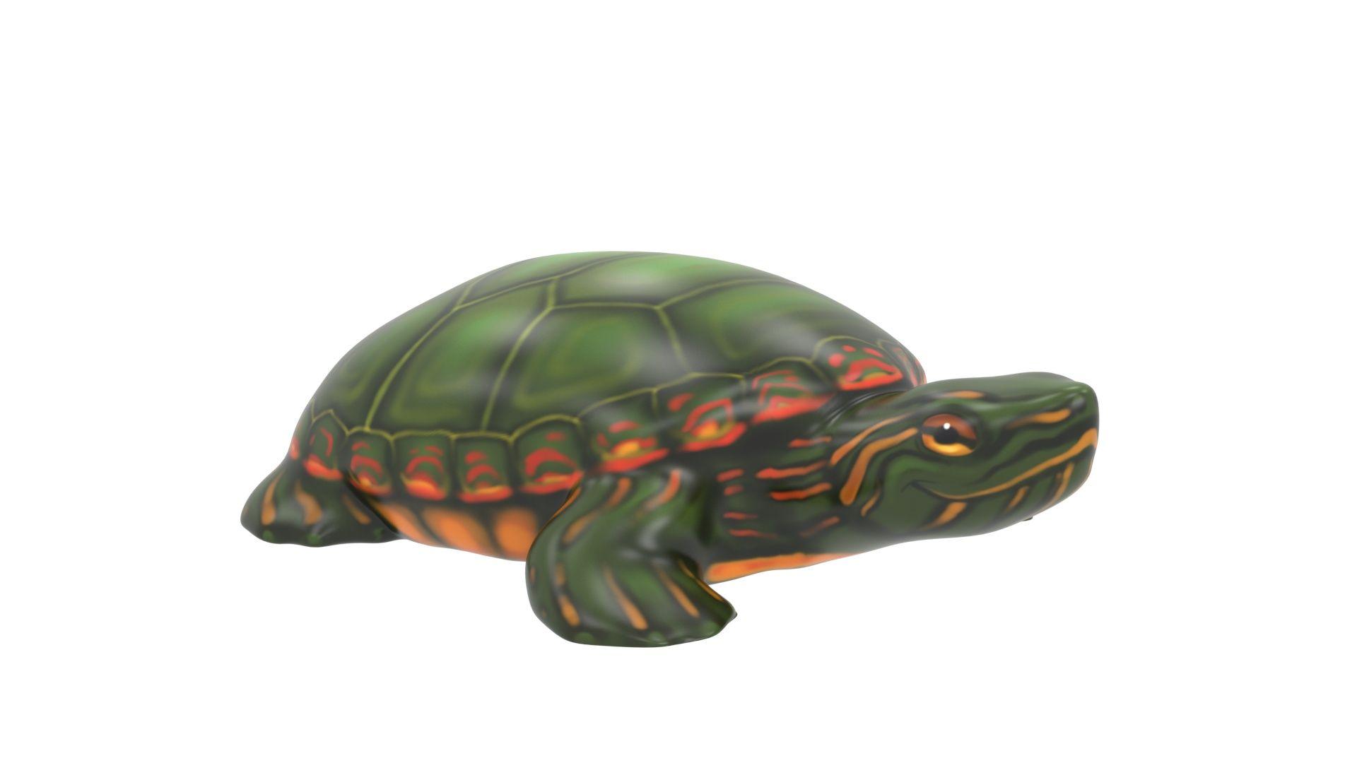 Tucson Turtle Climber (MRTP2020M)