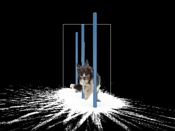 Dog Agility Weave Poles (MRDP06)