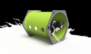 Dog Crawl Tunnel