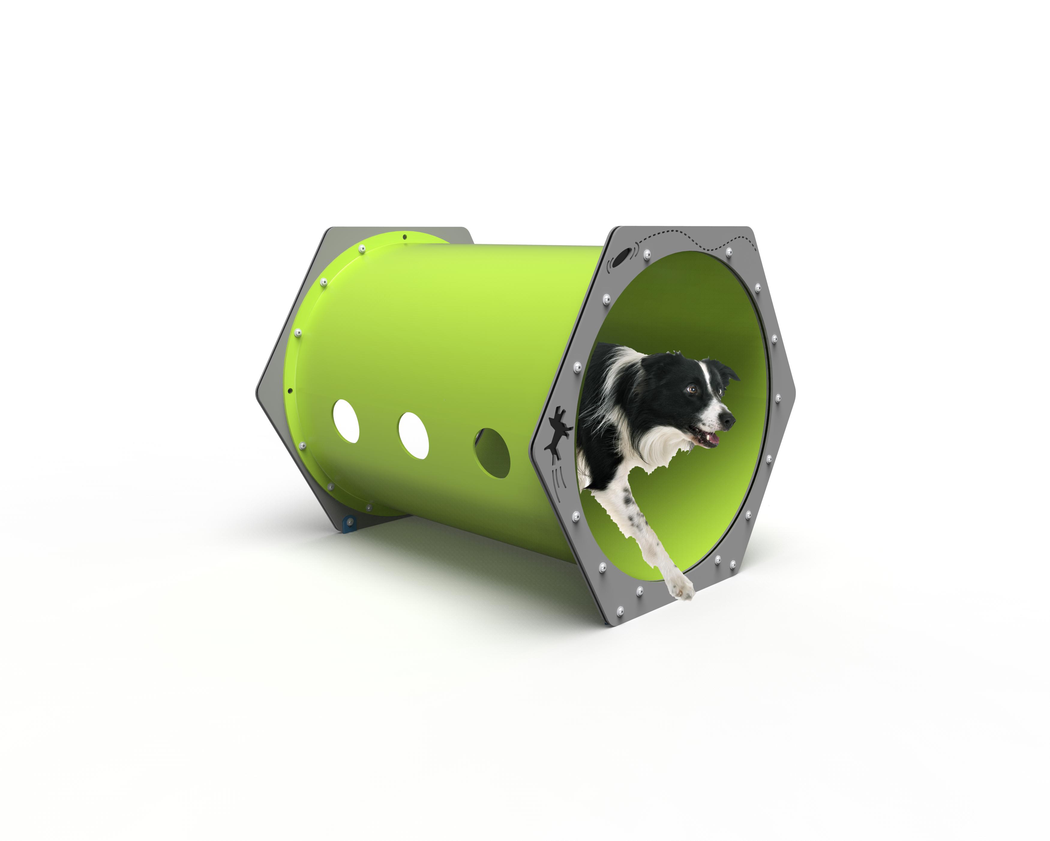 Dog Crawl Tunnel (MRDP09)