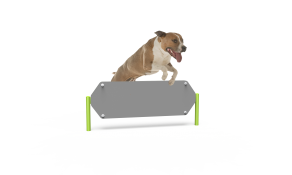 Dog Hexagon Hurdle