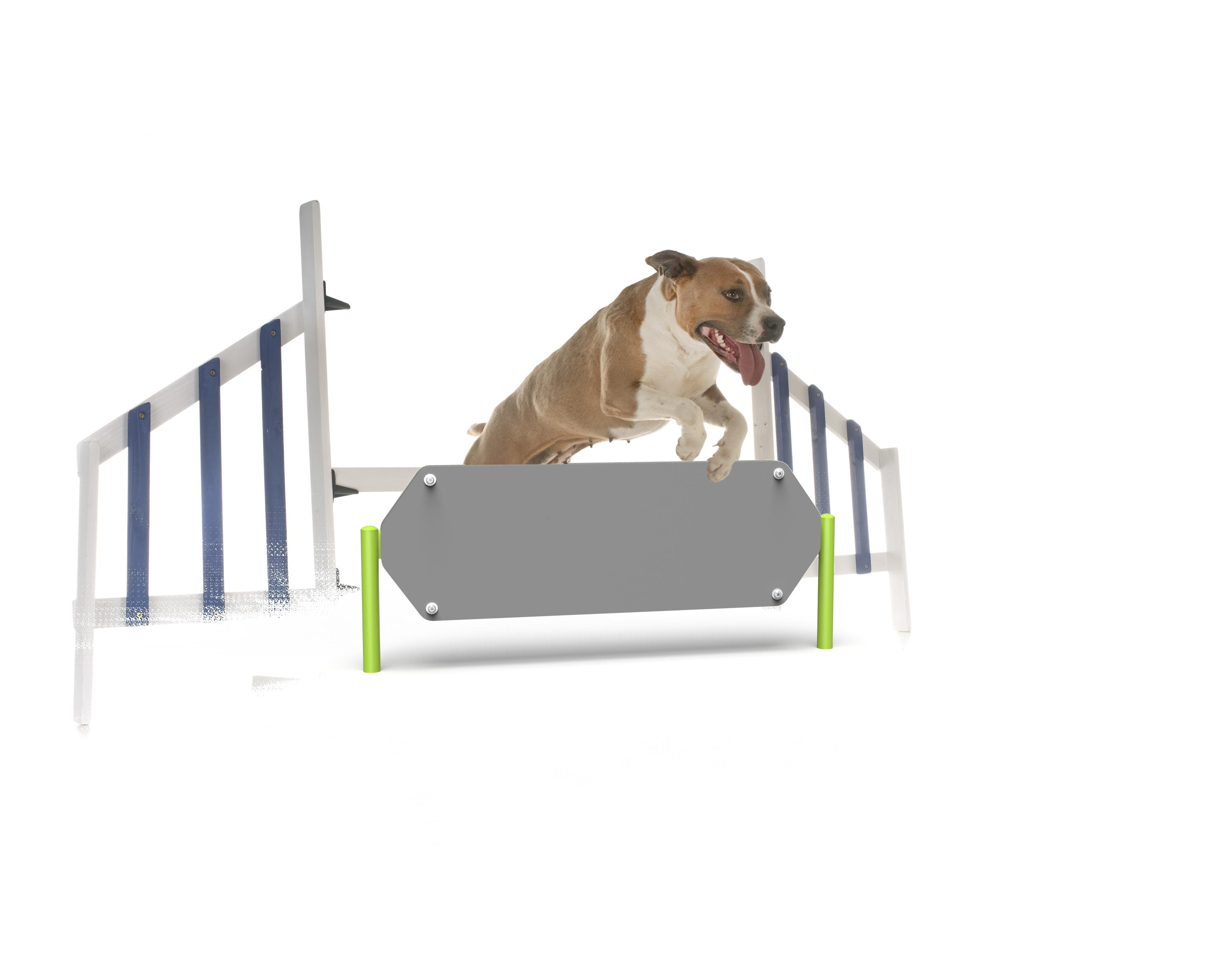 Dog Hexagon Hurdle (MRDP04)