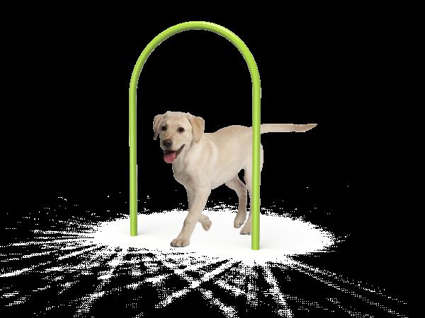 Dog Large Loop (MRDP02)