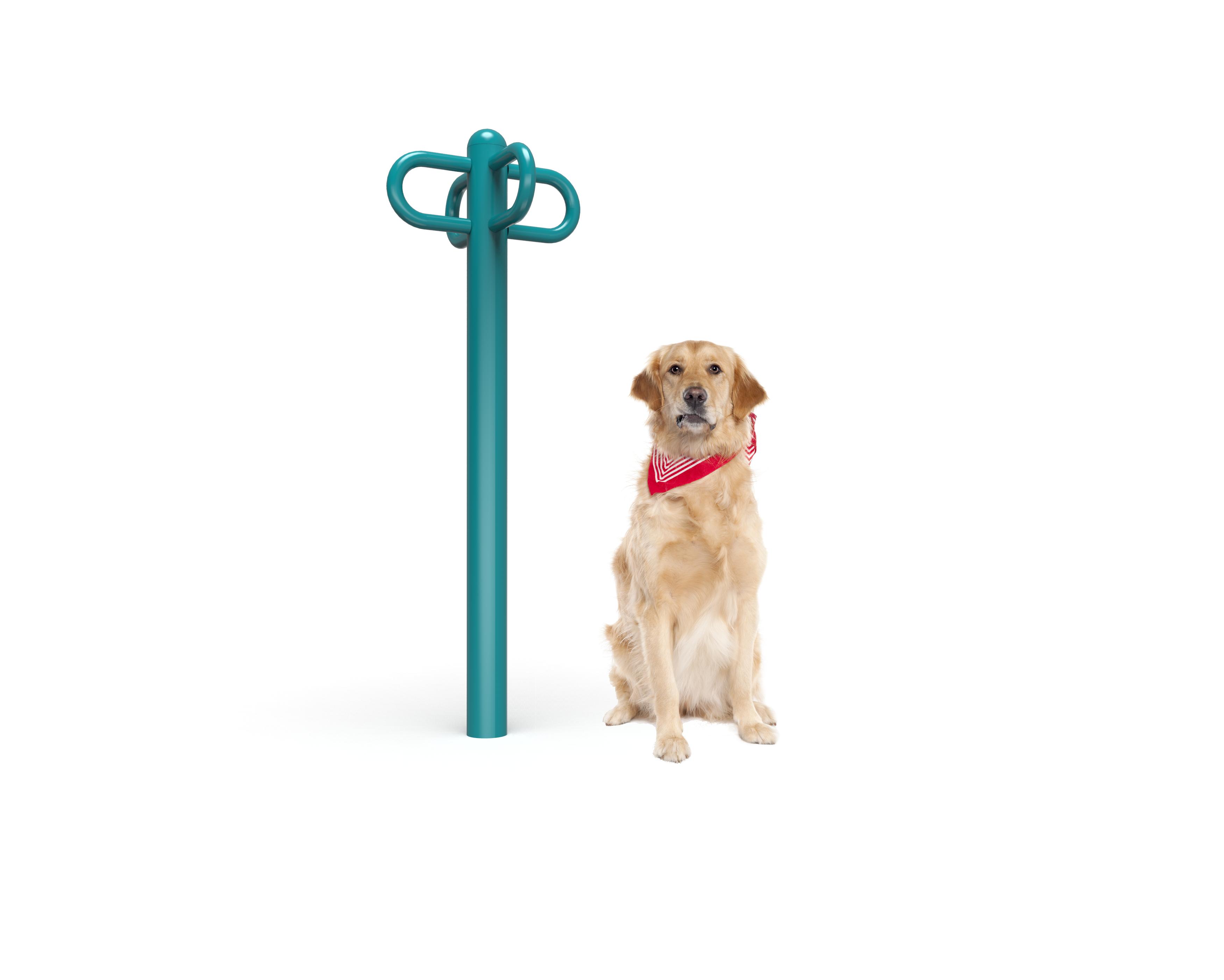 Dog Leash Rack (MRDP12)