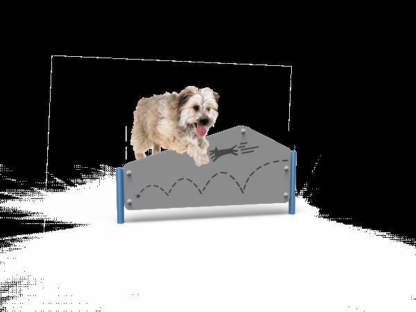 Dog Pentagon Hurdle (MRDP05)