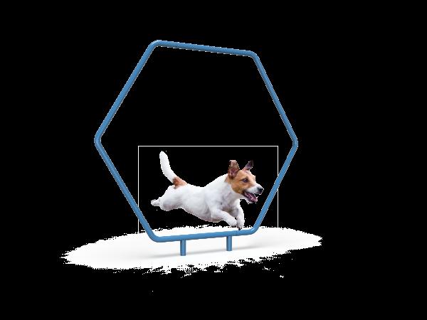 Dog Single Hoop (MRDP10)