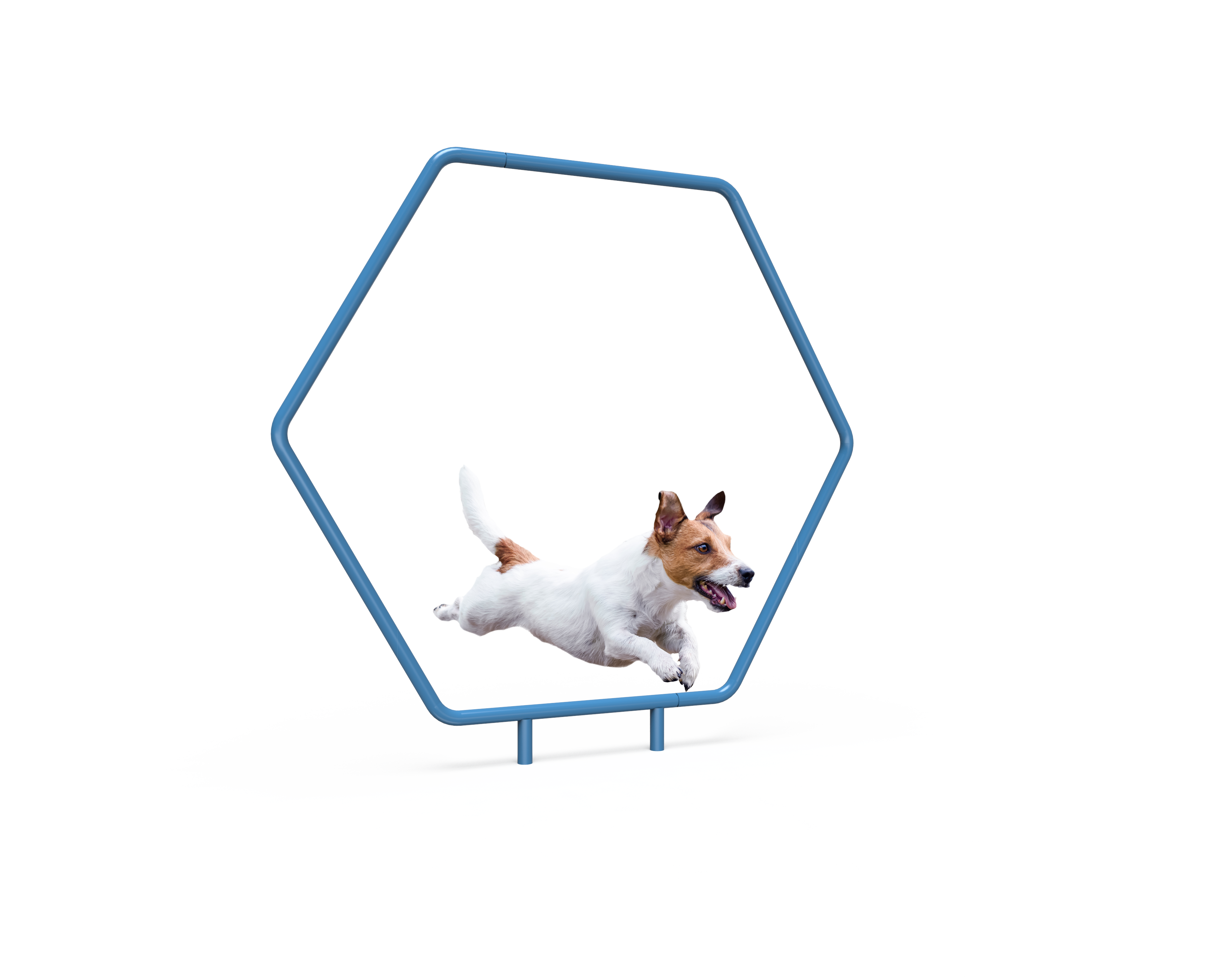Dog Single Hoop (MRDP10)