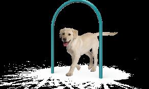 Dog Small Loop