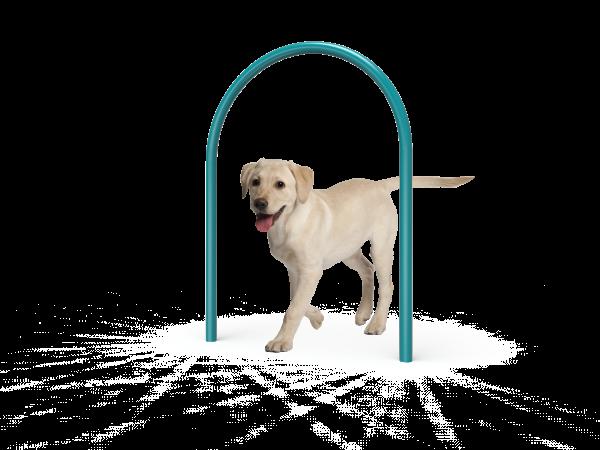 Dog Small Loop (MRDP01)