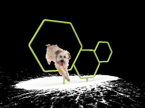 Dog Triple Hoops (MRDP11)
