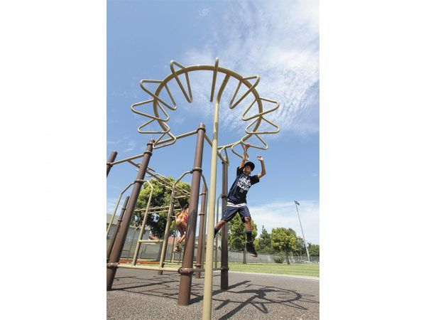 270° Try Ring Climber